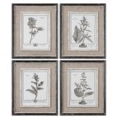 Uttermost Casual Grey Study Framed Art  4個組